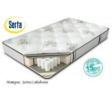 Матрас Serta Caledonia