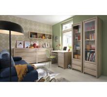 Мебель для детской комнаты Стефан 01